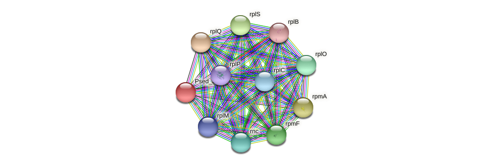Psed_3116 protein (Pseudonocardia dioxanivorans) - STRING interaction network