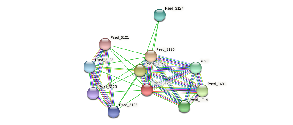 Psed_3126 protein (Pseudonocardia dioxanivorans) - STRING interaction network