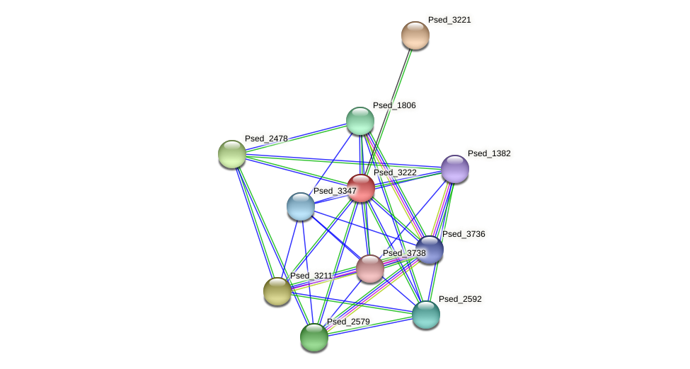 Psed_3222 protein (Pseudonocardia dioxanivorans) - STRING interaction network