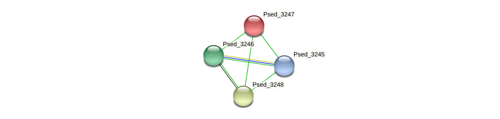 Psed_3247 protein (Pseudonocardia dioxanivorans) - STRING interaction network
