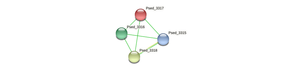 Psed_3317 protein (Pseudonocardia dioxanivorans) - STRING interaction network