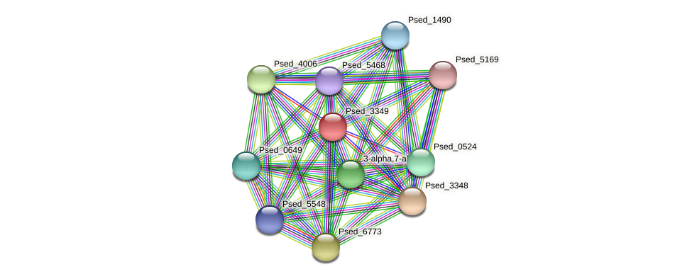 Psed_3349 protein (Pseudonocardia dioxanivorans) - STRING interaction network