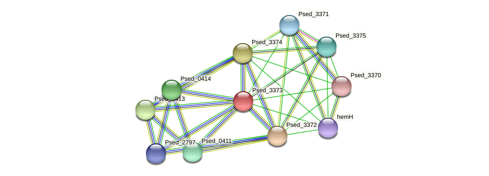 Psed_3373 protein (Pseudonocardia dioxanivorans) - STRING interaction network