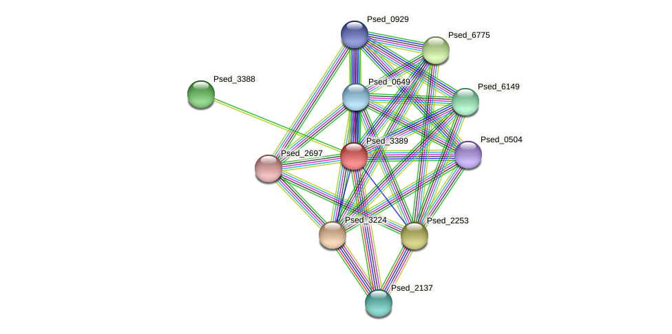 Psed_3389 protein (Pseudonocardia dioxanivorans) - STRING interaction network