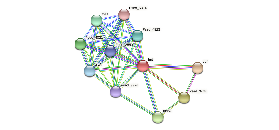 fmt protein (Pseudonocardia dioxanivorans) - STRING interaction network