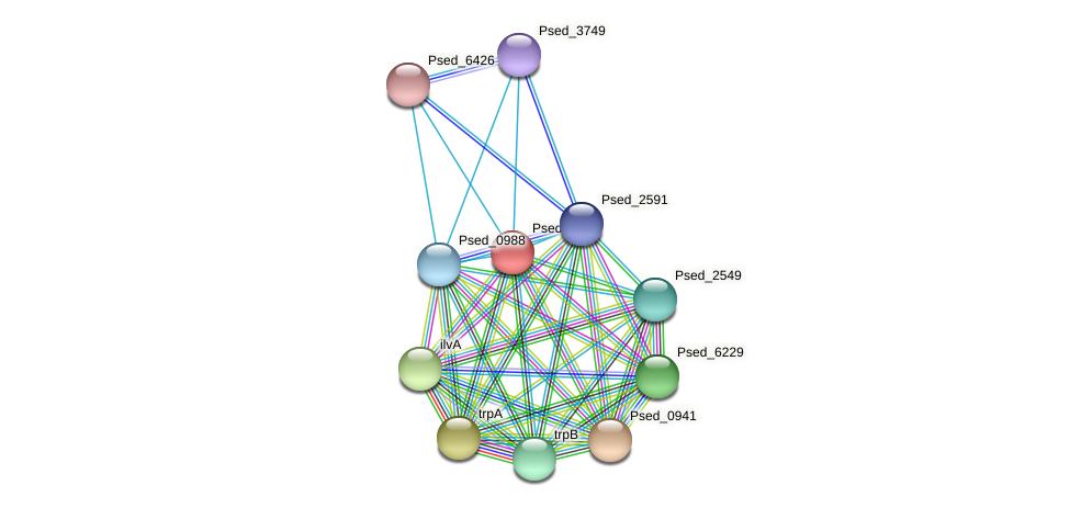 Psed_3586 protein (Pseudonocardia dioxanivorans) - STRING interaction network