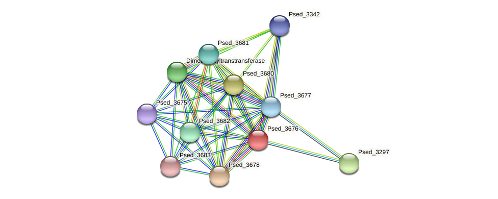 Psed_3676 protein (Pseudonocardia dioxanivorans) - STRING interaction network