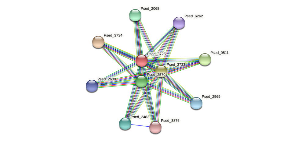 Psed_3725 protein (Pseudonocardia dioxanivorans) - STRING interaction network
