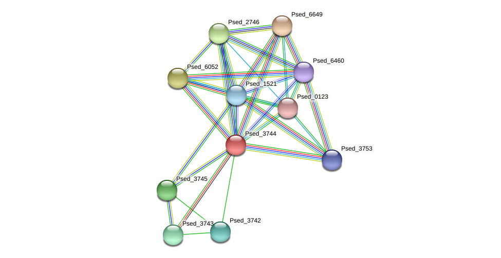 Psed_3744 protein (Pseudonocardia dioxanivorans) - STRING interaction network