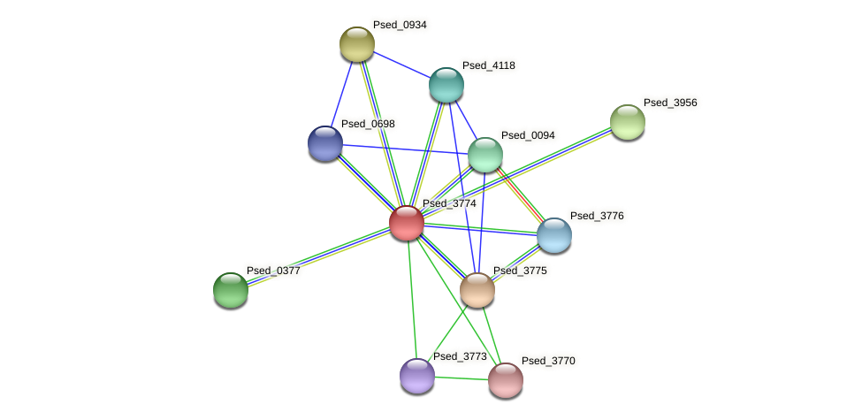 Psed_3774 protein (Pseudonocardia dioxanivorans) - STRING interaction network