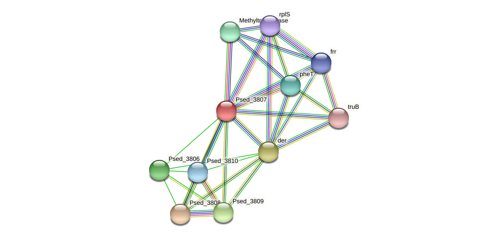 Psed_3807 protein (Pseudonocardia dioxanivorans) - STRING interaction network