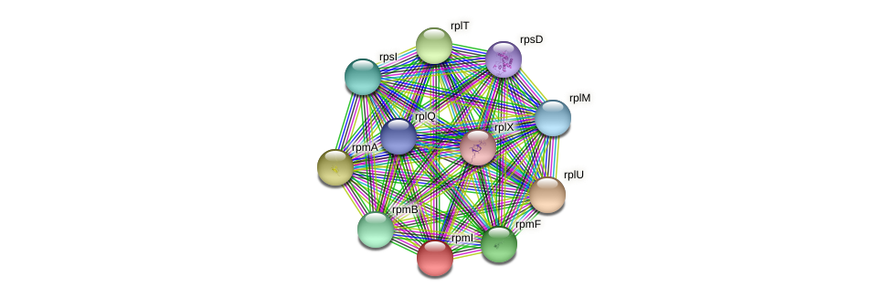 rpmI protein (Pseudonocardia dioxanivorans) - STRING interaction network