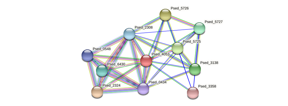 Psed_4053 protein (Pseudonocardia dioxanivorans) - STRING interaction network