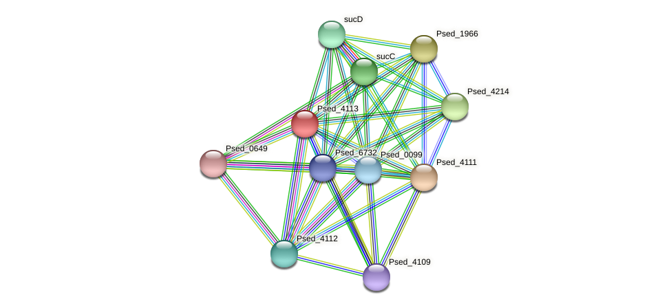 Psed_4113 protein (Pseudonocardia dioxanivorans) - STRING interaction network