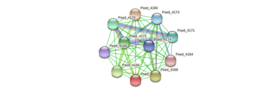 Psed_4167 protein (Pseudonocardia dioxanivorans) - STRING interaction network