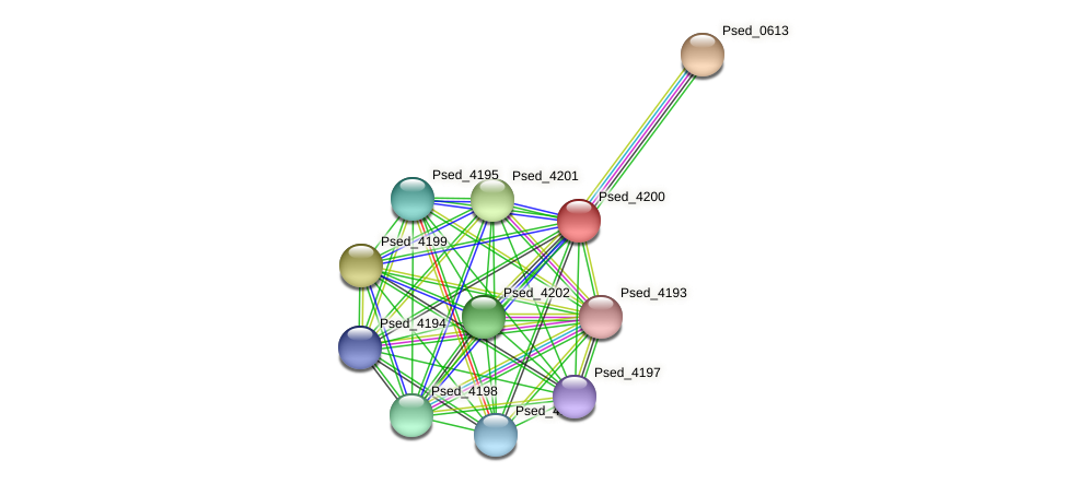 Psed_4200 protein (Pseudonocardia dioxanivorans) - STRING interaction network