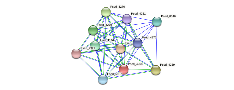 Psed_4268 protein (Pseudonocardia dioxanivorans) - STRING interaction network