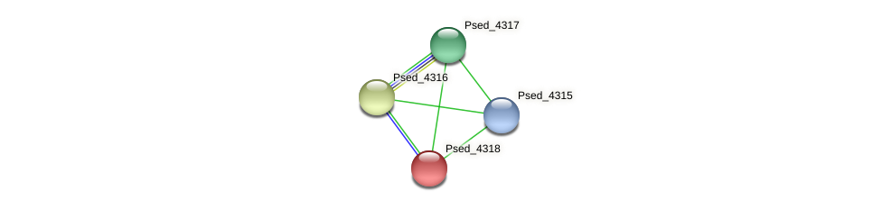 Psed_4318 protein (Pseudonocardia dioxanivorans) - STRING interaction network