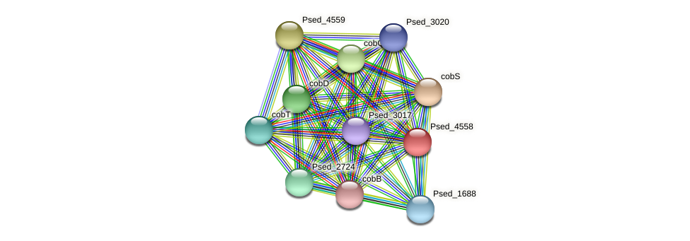 Psed_4558 protein (Pseudonocardia dioxanivorans) - STRING interaction network