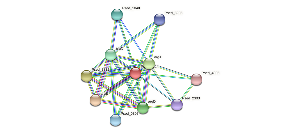 Psed_4624 protein (Pseudonocardia dioxanivorans) - STRING interaction network