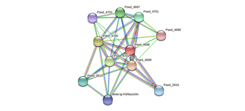 Psed_4698 protein (Pseudonocardia dioxanivorans) - STRING interaction network