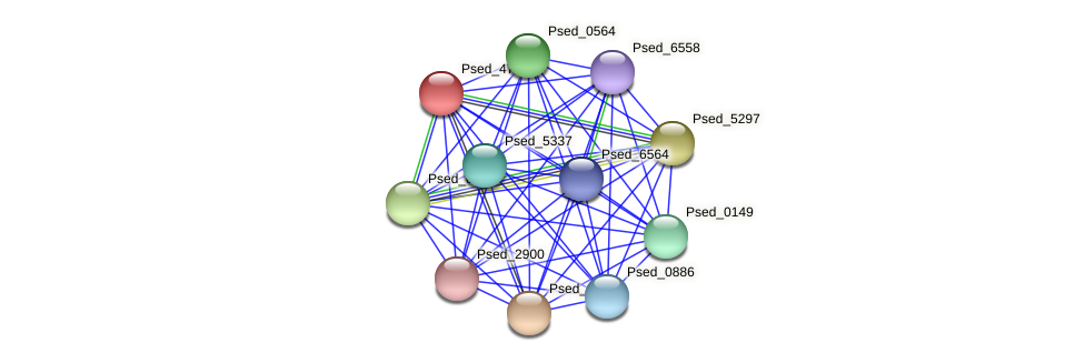 Psed_4747 protein (Pseudonocardia dioxanivorans) - STRING interaction network