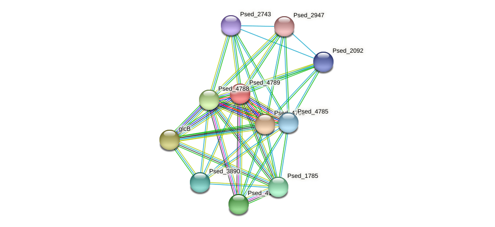 Psed_4789 protein (Pseudonocardia dioxanivorans) - STRING interaction network