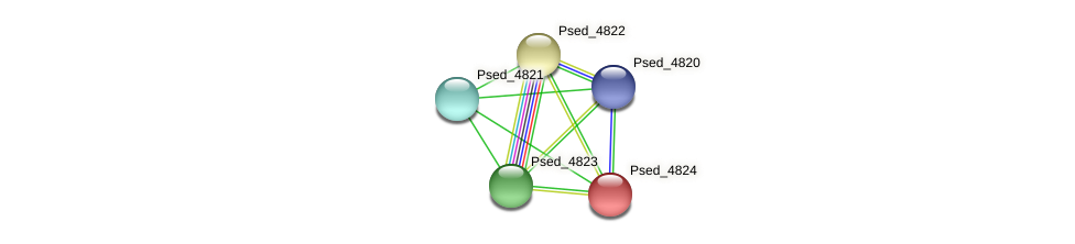 Psed_4824 protein (Pseudonocardia dioxanivorans) - STRING interaction network