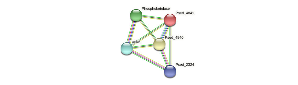 Psed_4841 protein (Pseudonocardia dioxanivorans) - STRING interaction network