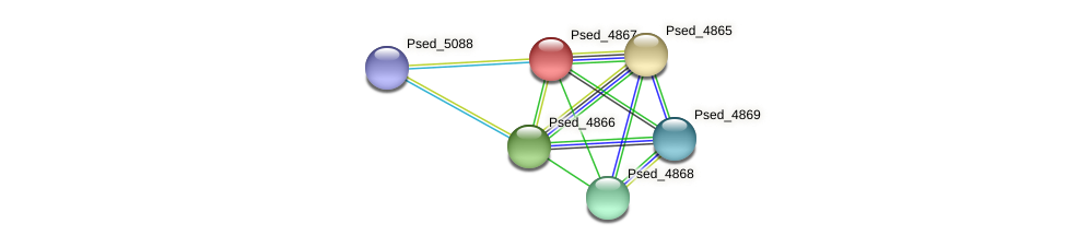 Psed_4867 protein (Pseudonocardia dioxanivorans) - STRING interaction network