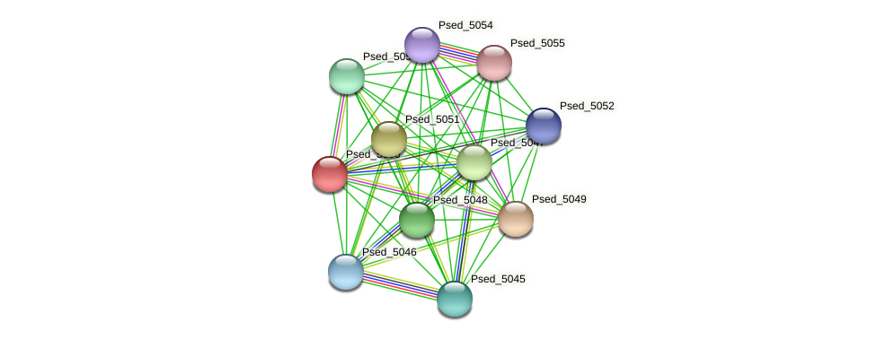 Psed_5050 protein (Pseudonocardia dioxanivorans) - STRING interaction network