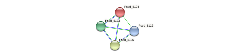 Psed_5124 protein (Pseudonocardia dioxanivorans) - STRING interaction network