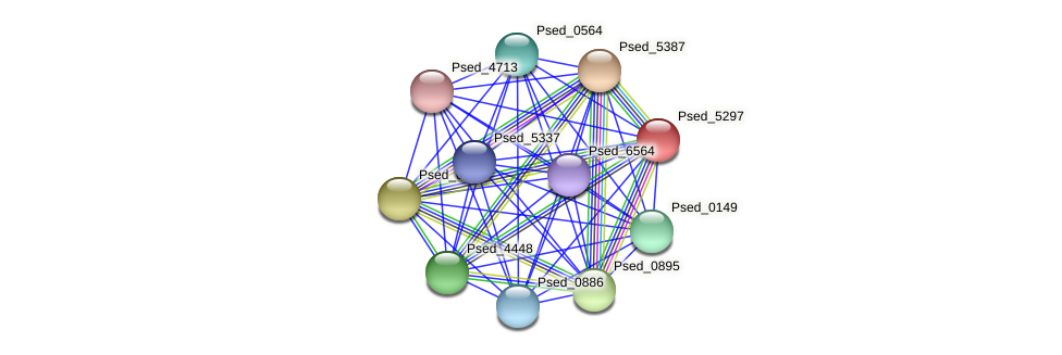 Psed_5297 protein (Pseudonocardia dioxanivorans) - STRING interaction network