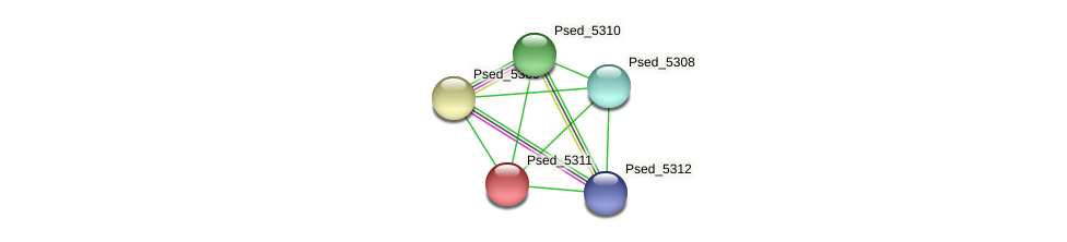 Psed_5311 protein (Pseudonocardia dioxanivorans) - STRING interaction network