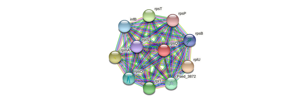 rpsQ protein (Pseudonocardia dioxanivorans) - STRING interaction network