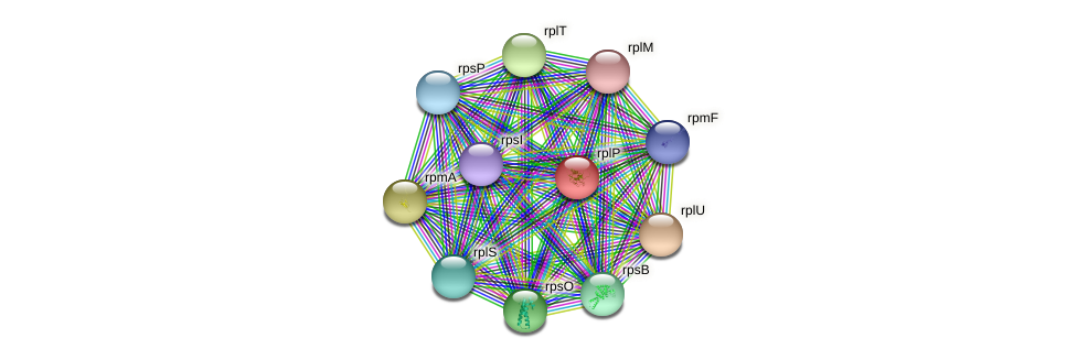 rplP protein (Pseudonocardia dioxanivorans) - STRING interaction network