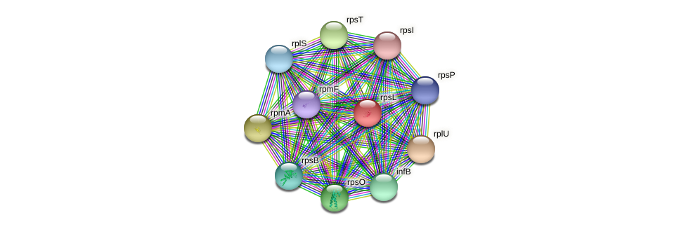 rpsL protein (Pseudonocardia dioxanivorans) - STRING interaction network