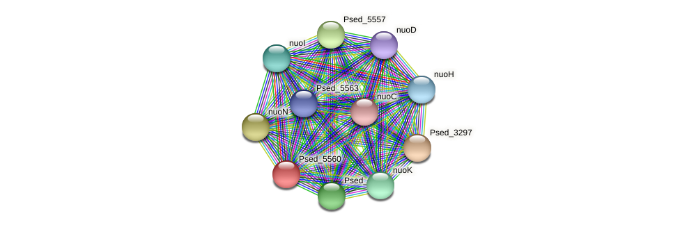 Psed_5560 protein (Pseudonocardia dioxanivorans) - STRING interaction network