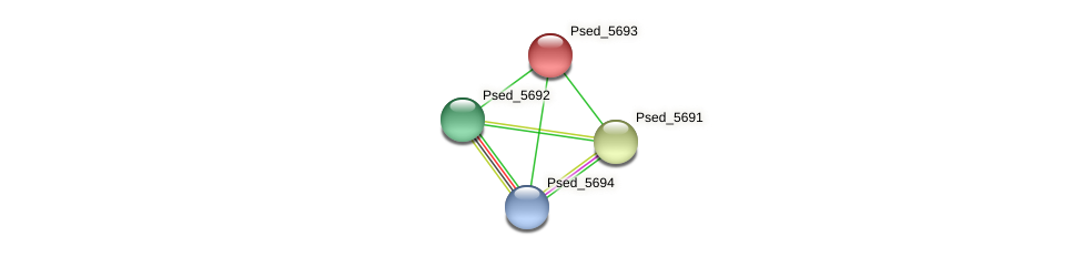 Psed_5693 protein (Pseudonocardia dioxanivorans) - STRING interaction network