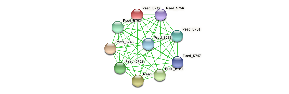 Psed_5749 protein (Pseudonocardia dioxanivorans) - STRING interaction network