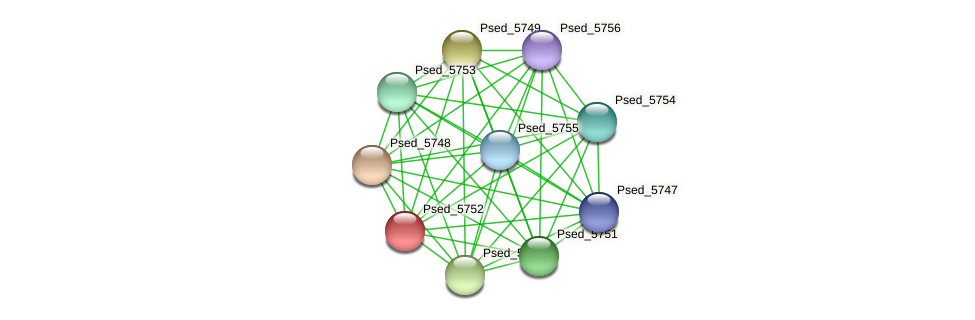 Psed_5752 protein (Pseudonocardia dioxanivorans) - STRING interaction network