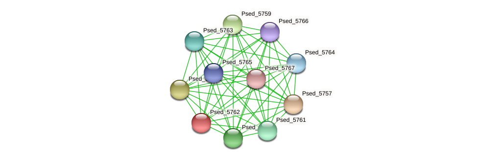 Psed_5762 protein (Pseudonocardia dioxanivorans) - STRING interaction network