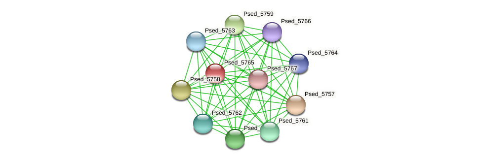 Psed_5765 protein (Pseudonocardia dioxanivorans) - STRING interaction network