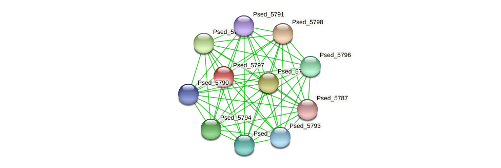 Psed_5797 protein (Pseudonocardia dioxanivorans) - STRING interaction network