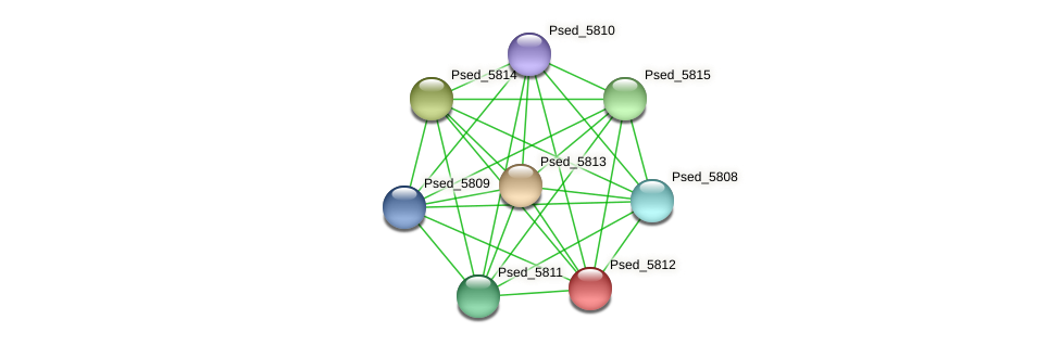 Psed_5812 protein (Pseudonocardia dioxanivorans) - STRING interaction network