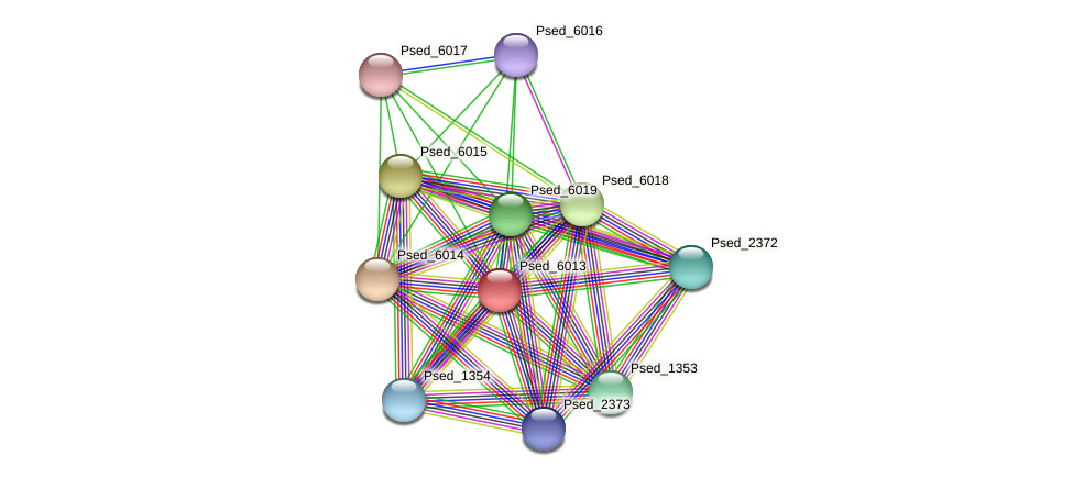 Psed_6013 protein (Pseudonocardia dioxanivorans) - STRING interaction network