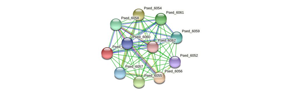 Psed_6053 protein (Pseudonocardia dioxanivorans) - STRING interaction network