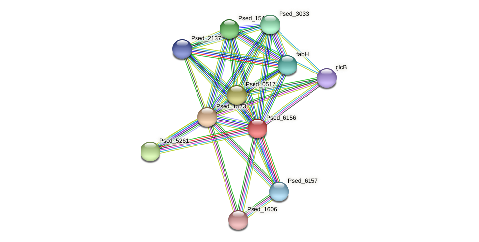 Psed_6156 protein (Pseudonocardia dioxanivorans) - STRING interaction network