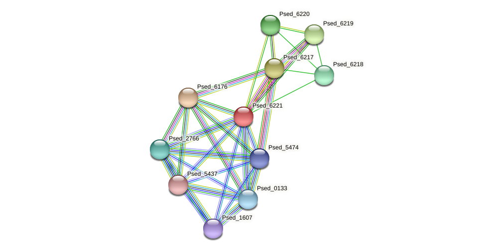 Psed_6221 protein (Pseudonocardia dioxanivorans) - STRING interaction network