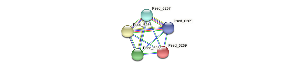 Psed_6269 protein (Pseudonocardia dioxanivorans) - STRING interaction network